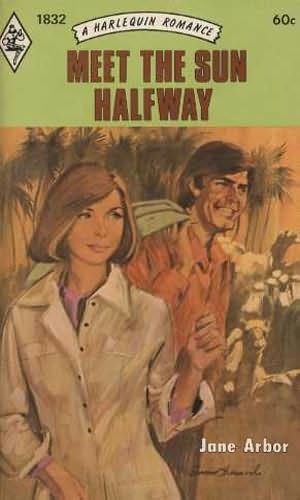 book cover of Meet the Sun Halfway