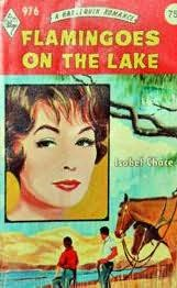 book cover of Flamingoes on the Lake