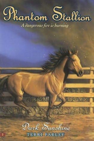 book cover of Dark Sunshine
