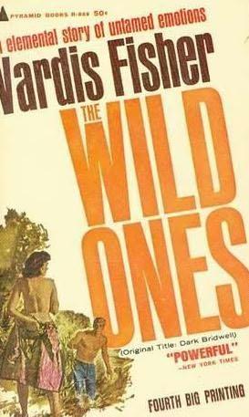 book cover of Dark Bridwell