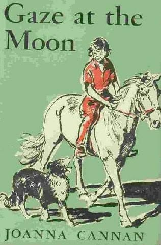 book cover of Gaze At the Moon
