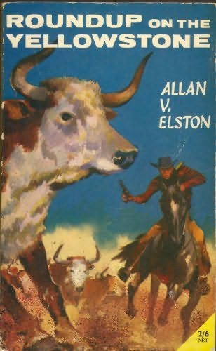 book cover of Round-up on the Yellowstone