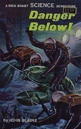 book cover of Danger Below!