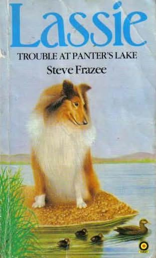 book cover of Trouble at Panter\'s Lake