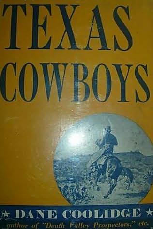 book cover of Texas Cowboys