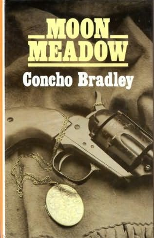 book cover of Moon Meadow