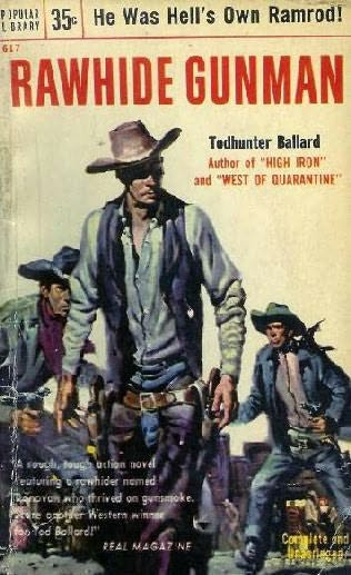 book cover of Rawhide Gunman