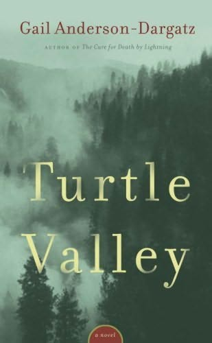 book cover of Turtle Valley