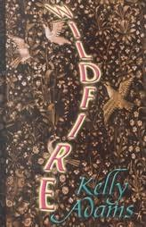 book cover of Wildfire