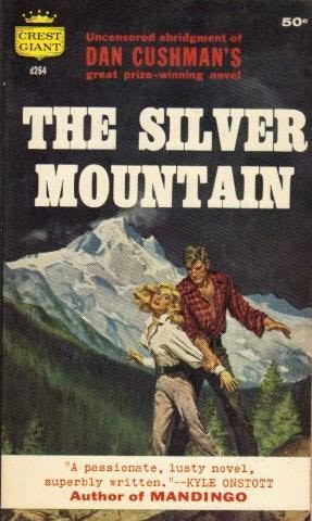 book cover of The Silver Mountain