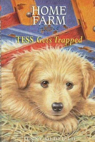 book cover of Tess Gets Trapped