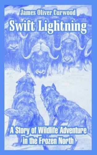 book cover of Swift Lightning