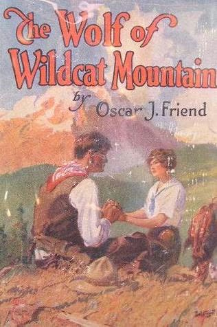 book cover of The Wolf of Wildcat Mountain