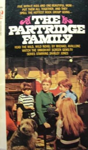 book cover of The Partridge Family