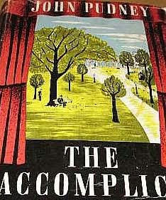 book cover of The Accomplice
