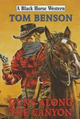 book cover of Guns Along the Canyon
