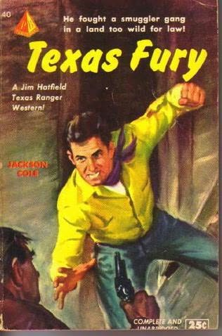 book cover of Texas Fury