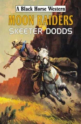 book cover of Moon Raiders