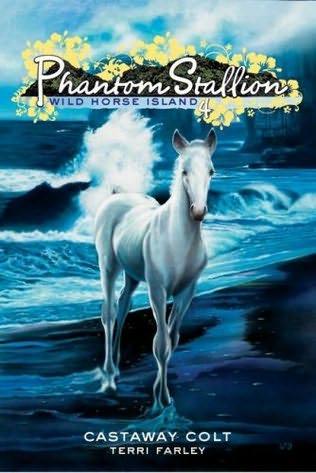 book cover of Castaway Colt