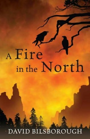 book cover of A Fire in the North