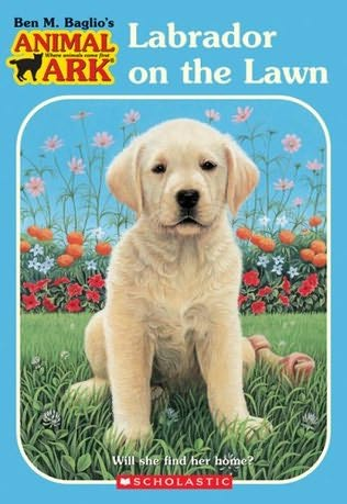 book cover of Labrador On the Lawn