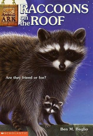 book cover of Raccoons On the Roof