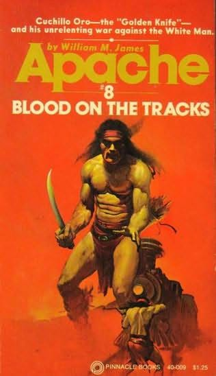 book cover of Blood On the Tracks