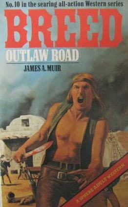 book cover of Outlaw Road