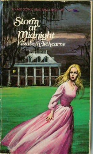 book cover of Storm At Midnight