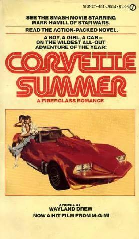 book cover of Corvette Summer