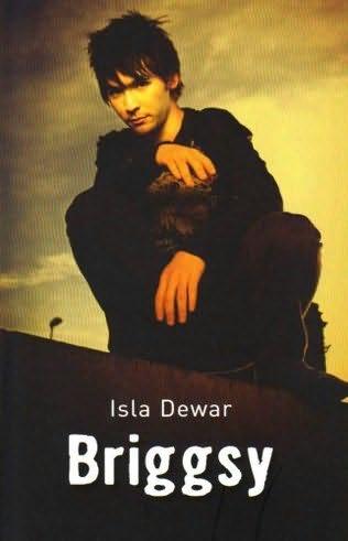 book cover of Briggsy