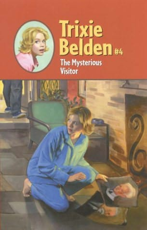 book cover of The Mysterious Visitor