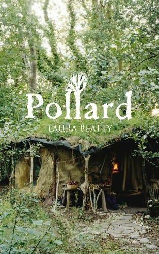 book cover of Pollard