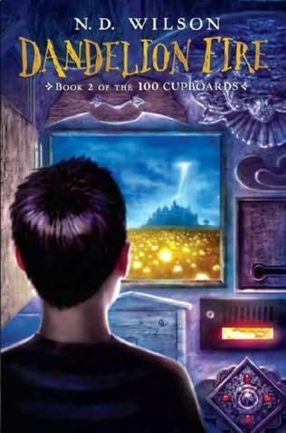 The second book ...100 Cupboards Series