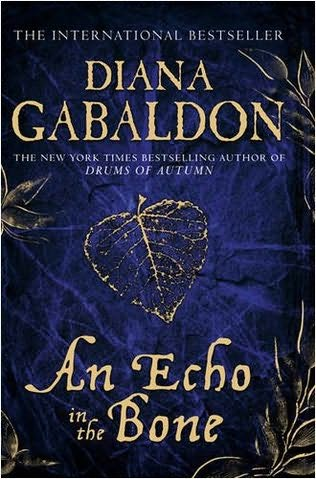 book cover of An Echo in the Bone