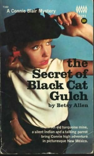 book cover of The Secret At Black Cat Gulch