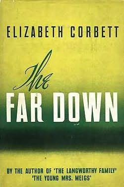 book cover of The Far Down