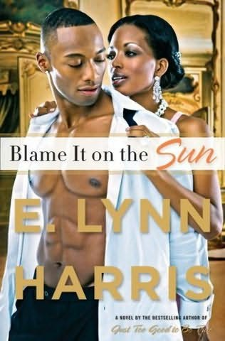 book cover of Blame It On the Sun