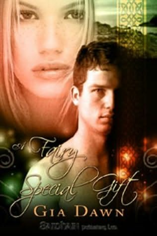 book cover of A Fairy Special Gift