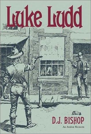 book cover of Luke Ludd