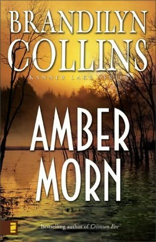 book cover of Amber Morn