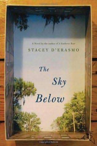 book cover of The Sky Below
