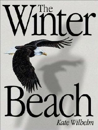 book cover of The Winter Beach
