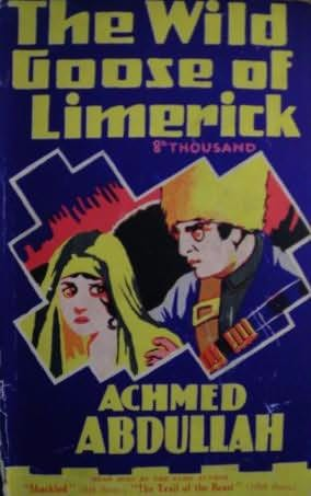 book cover of A Wild Goose of Limerick