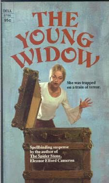 book cover of The Young Widow