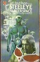 book cover of Steeleye Waterspace