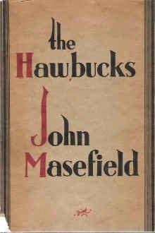 book cover of The Hawbucks