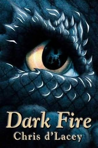 book about dragons with fire in the title