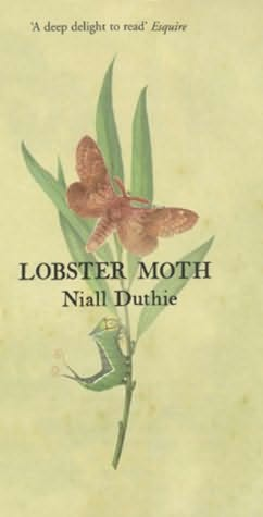 book cover of Lobster Moth