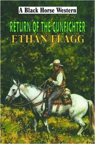 book cover of Return of the Gun Fighter